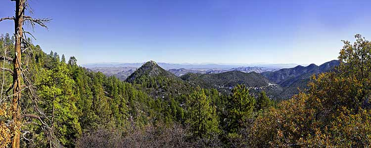 Emory Pass panorama in the Gila National Forest; a Mimbres Mountains picture from New Mexico