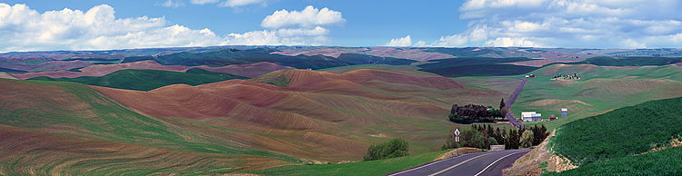 Palouse Country Washington; panorama taken of Clear Creek Road; picture sold as framed photo or canvas