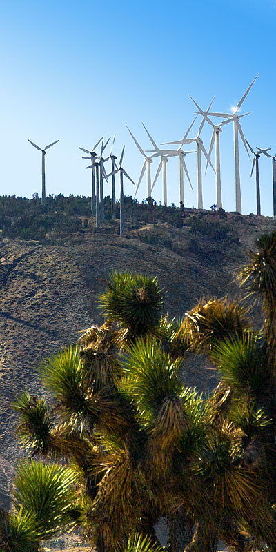 Vertical Panorama of Wind Power; Windmills in Mojave, CA