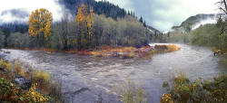 Oregon panorama - Elk - Nehalem River - Oregon Coast